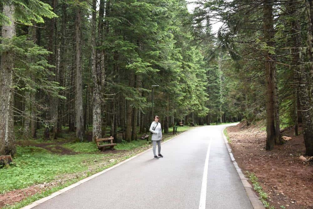 Nacionalni park Durmitor