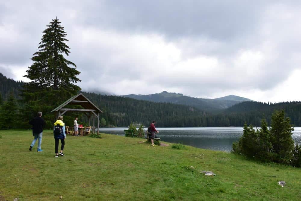 Staza oko Crnog jezera