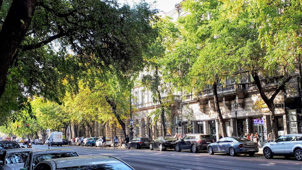 Avenija Andraši