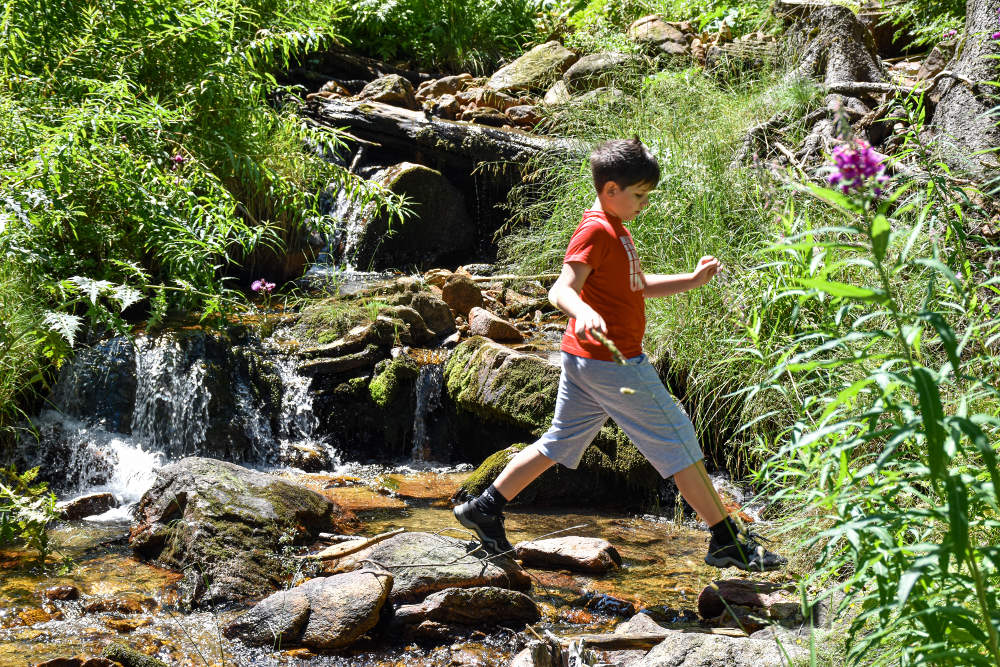 Potok na Pirinu leti
