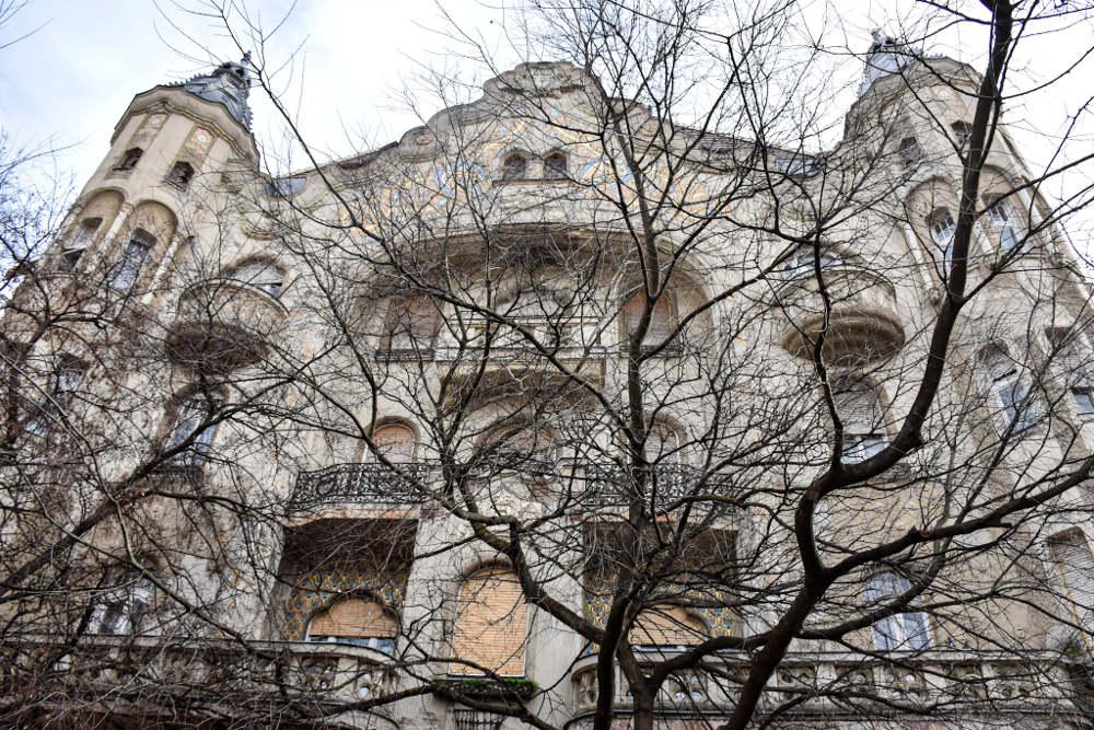 Grofova palata u Segedinu, pogled kroz grane drveta